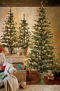 Flat_Holiday_Prelit_Tree