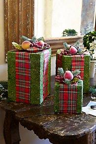 Holiday Moss Box Set