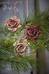 Santa Rosa Clip Ornament