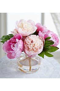 Peony in Tall Glass Vase