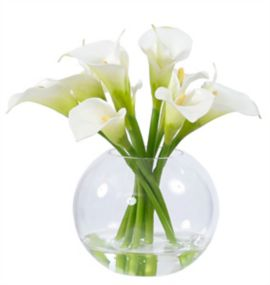 Calla Lily in Glass