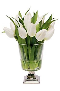 Tulips in Lamp Glass