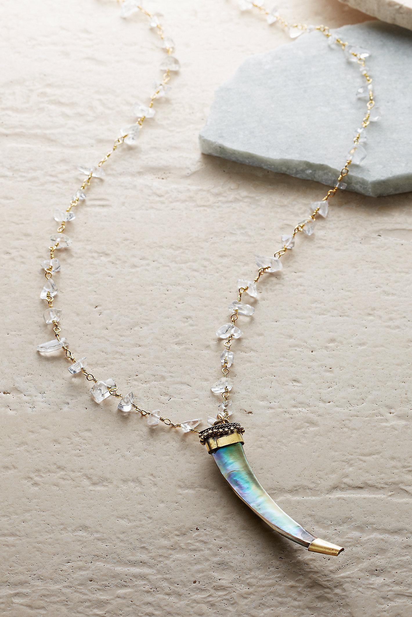 Abalone Tusk Necklace