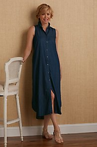 Devine_Denim_Dress