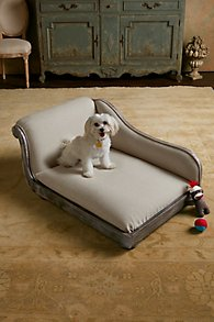 Coco_Chaise_Dog_Bed