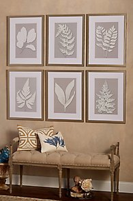Moonlight_Fern_Prints_set_of_6