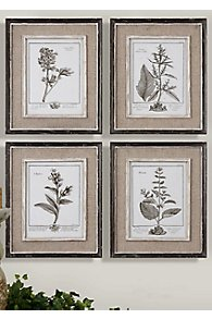 Etude de Gris Prints, set of 4