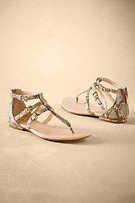 Isola Gladiator Sandals